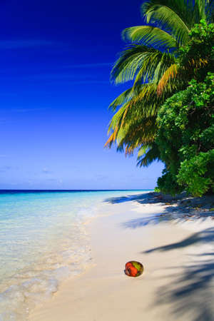 Tropical Paradise at Maldives with palms and blue sky Stock Photo - 5907753