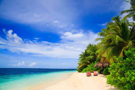 Tropical Paradise at Maldives with palms and blue sky Stock Photo - 6326766