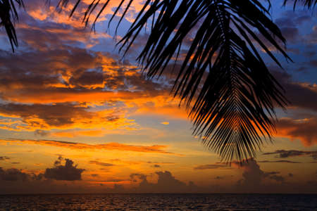 Maldivian Sunset image with nice color Stock Photo - 6583897