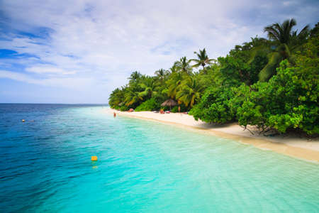 Tropical Paradise at Maldives with palms and blue sky Stock Photo - 6733923