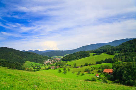 Panorama of summer Landscape, please see also other my picture