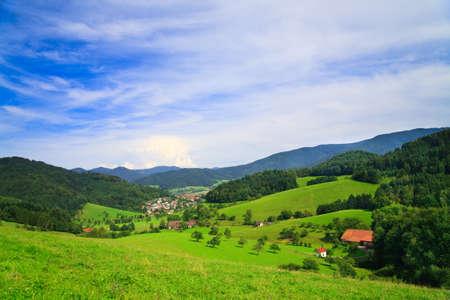 Panorama van de zomer landschap, gelieve Zie ook andere mijn foto  Stockfoto
