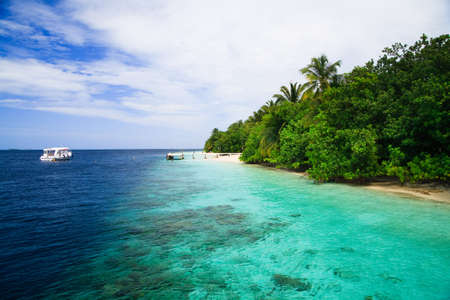 Tropical Paradise at Maldives with palms and blue sky Stock Photo - 7228710
