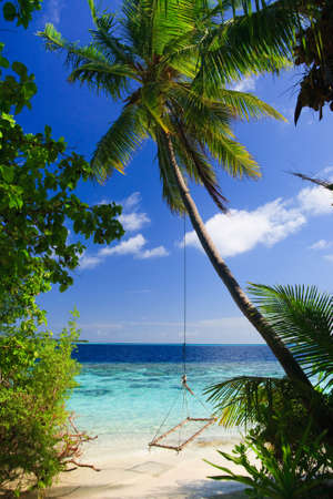 Tropical Paradise at Maldives with palms and blue sky Stock Photo - 7228709