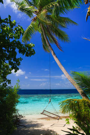 Tropical Paradise at Maldives with palms and blue sky Stock Photo - 7351162