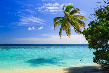 playas tropicales: Paraíso tropical en Maldivas con palmeras y cielo azul