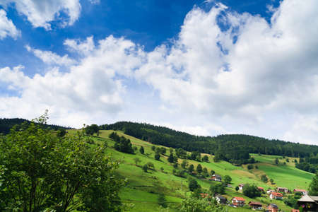 Sumer landscape - green fields, the blue sky Stock Photo - 8071146