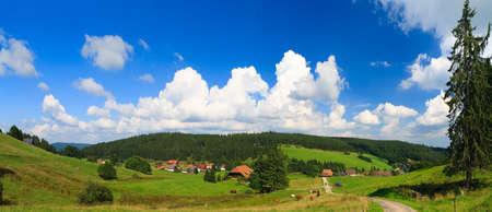 Sumer landscape - green fields, the blue sky photo