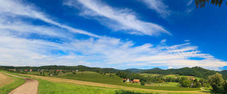 Sumer landscape - green fields, the blue sky Stock Photo - 8070971