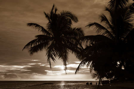 subtropics: Maldivian Sunset image with nice color Stock Photo
