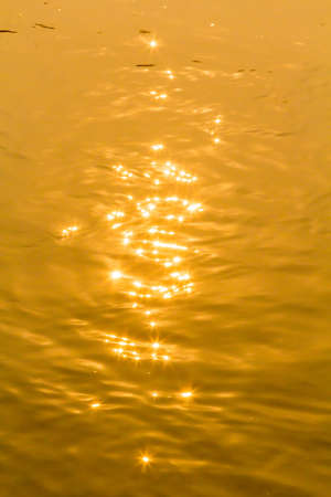 Sun reflection water gold  photo