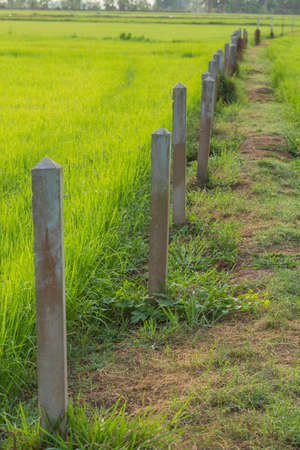 demarcation: Land demarcation pillars