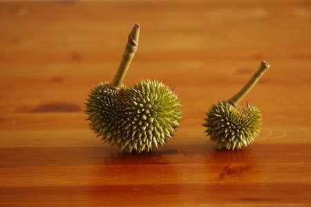 Durian.Durian season in Thailand. Stock Photo