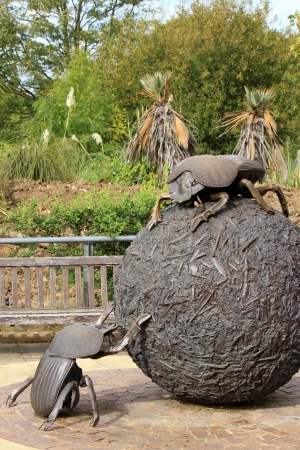 geotrupidae: London - CIRCA OCTOBER 2011  Sculpture at the London Zoo   Giant Dung beetle sculpture  by Wendy Taylor, 1999