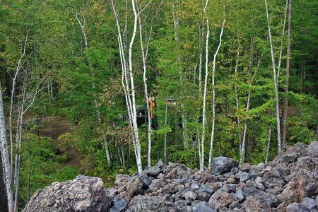 View of the forest from the edge of the frozen lava field along the road to Tolbachinsky Dol. Kamchatka Peninsula, Russia.