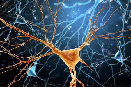 ヒト脳ニューロン構造の3D図示高解像度。 写真素材