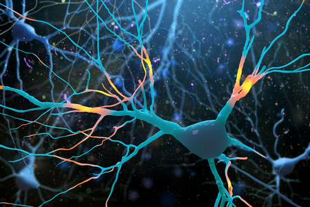 3D Illustration of human nerve cells structure.A high resolution.