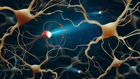 3D Illustration of Human Brain Neurons structure. A high resolution. Medical concept in the field of nanotechnology.
