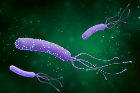 Illustration of Helicobacter pylori bacteria on an abstract green background. Medical concept. 3 d render. Stockfoto