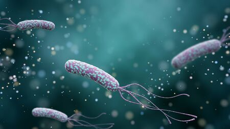 Illustration of Helicobacter pylori bacteria on an abstract color background. Medical concept. 3 d render.