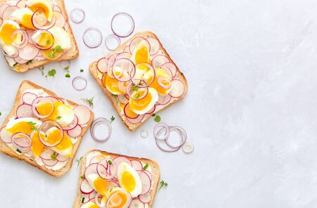 Delicious sandwiches with soft cream cheese, radishes, eggs and onions. Top view.