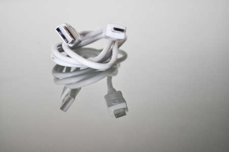 perplexity: white usb cable snake on a reflecting underground