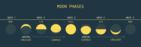 Vector Illustration of Informative Chart of Monthly Moon Cycle Vector