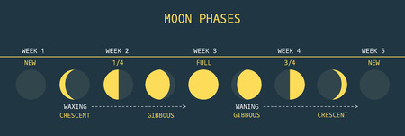 phase: Vector Illustration of Informative Chart of Monthly Moon Cycle Illustration