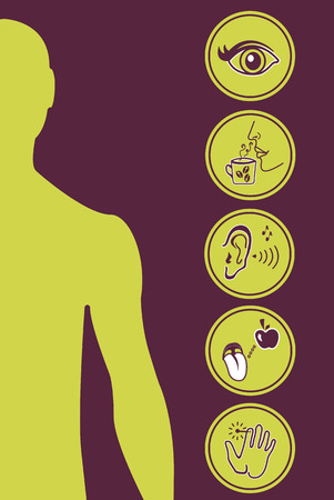 Icon Set of Five Human Senses Diagram