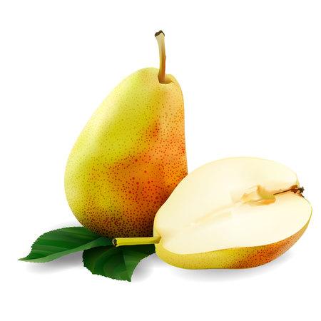 Pears Ilustrace