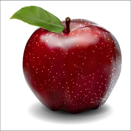 白地に赤いリンゴ  イラスト・ベクター素材