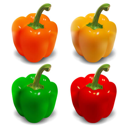 peper: Bell pepper vector - orange, yellow, green, red