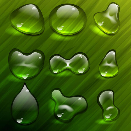 Transparent waterdrops vector template Ilustrace