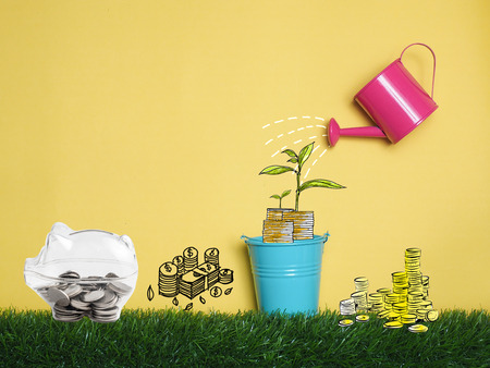 Top view Investment is like planting trees. Take care it will provide a good growth on colorful background.Watering can and money tree drawn concept for business investment, piggy bank object.