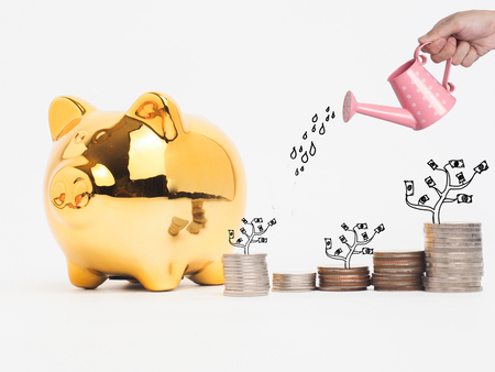 Golden  piggy bank filled with coins on white background.Saving investment colorful concept.Watering can and money growing concept for business investment, savings and making money. Zdjęcie Seryjne
