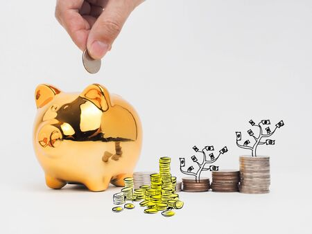 Golden  piggy bank filled with coins on white background.Saving investment colorful concept.Watering can and money growing concept for business investment, savings and making money. Stock Photo