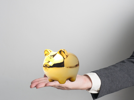 Businessman confirm project .Idea business on white background.he  hold piggy bank for invest money for business. Stock Photo