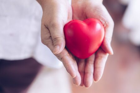 Elderly hand with wound carrying red heart. asian elderly woman holding red heart shape,