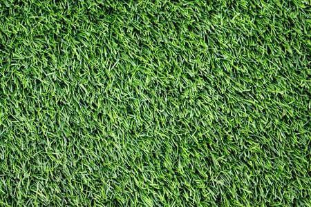 Green Artificial Grass Field Top Of View.