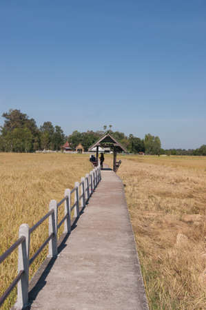 across: Bridge skip across the fields Stock Photo