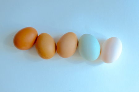 Chicken egg and duck egg line up on background, Compare shell tone of egg