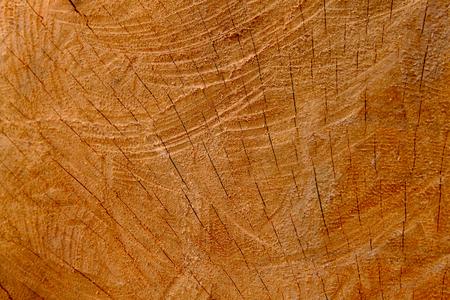 Wood texture background, Retro wallpaper background, Log  closeup Banque d'images - 122393516