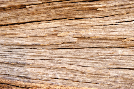 Wood texture background, Retro wallpaper background, Log  closeup Banque d'images - 122393519