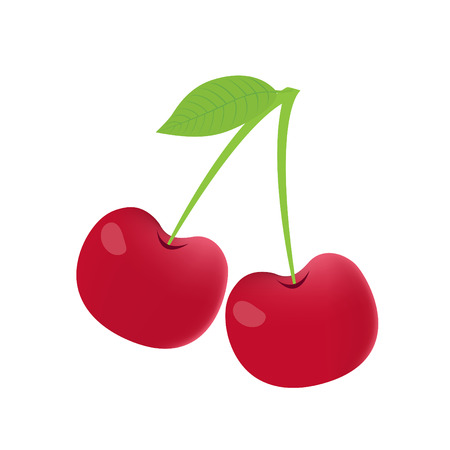 Cherry on white background, Cherry vector isolated, Cherry graphic Banque d'images - 122394031