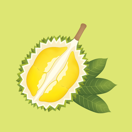 Half cut durian and leaf on green background Banque d'images - 122394032