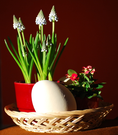 Still life composed by spring flowers and a large eastern egg.