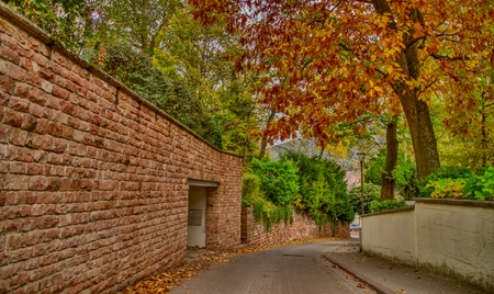 A street in autumn decorated by a stone wall and a colorful tree Stock fotó