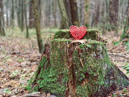 The red wicker heart is on the old stump with moss. Gloomy background for the day of all lovers