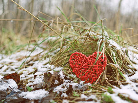 The wicker heart is hidden under the yellowed withered grass. Behind is an autumn or winter forest with dried yellow grass and snow cover.