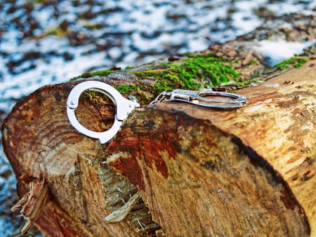 Steel handcuffs are on a log covered with snow and moss. Image of the captured criminal Stock Photo